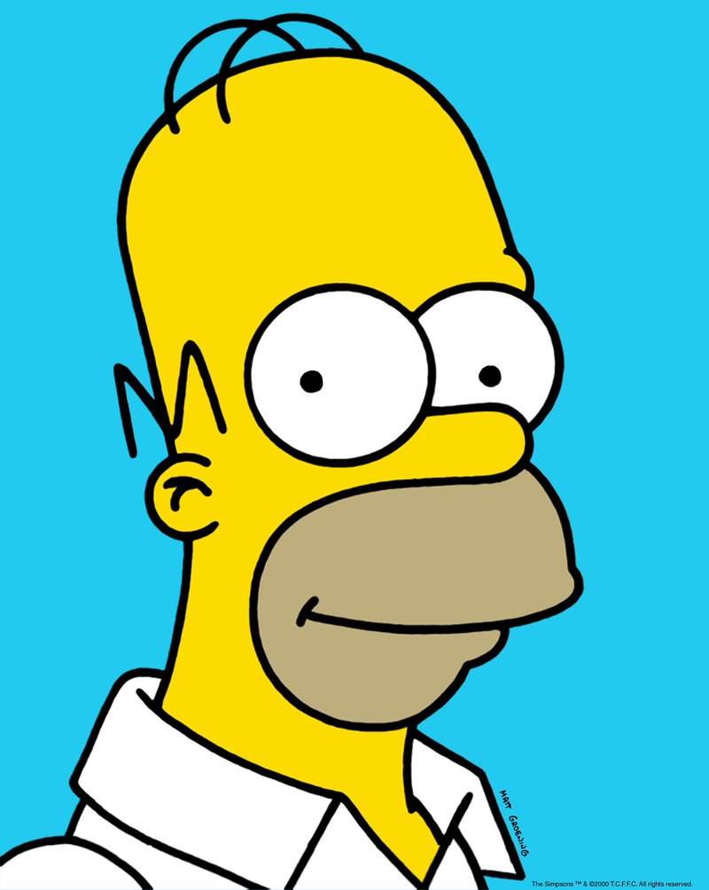 Homer Simpson Character