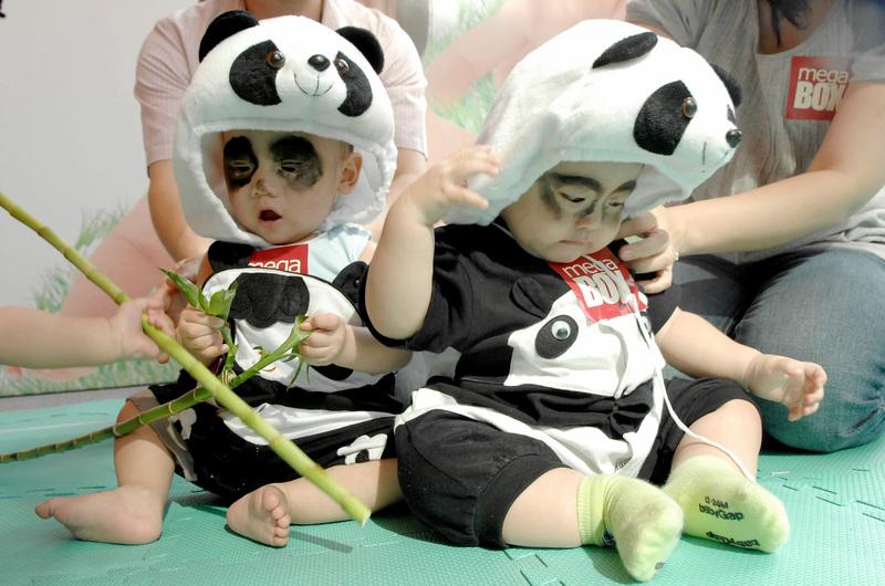 Drabužėliai Pandakids